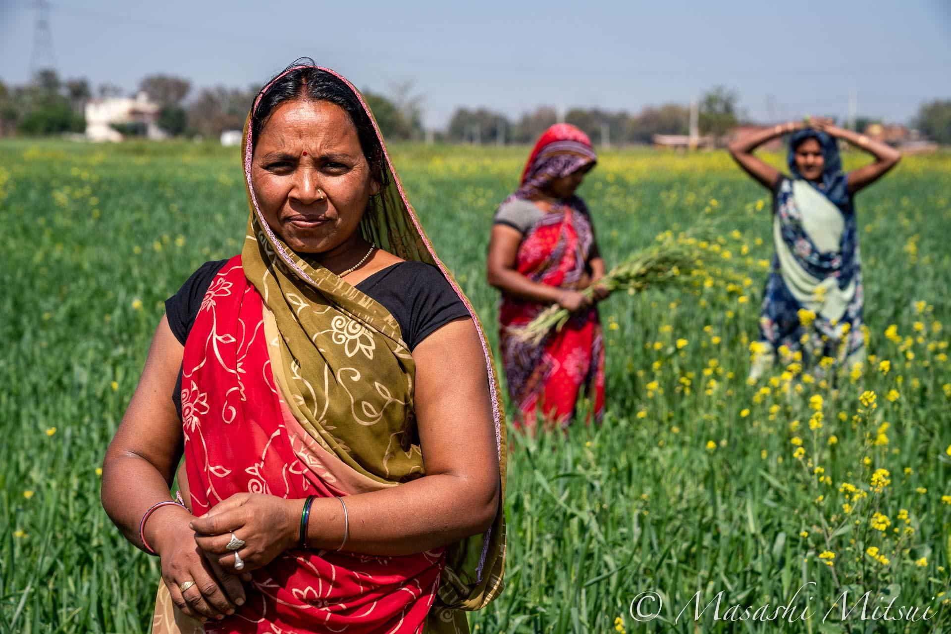 india19-98445
