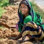 india19-98873