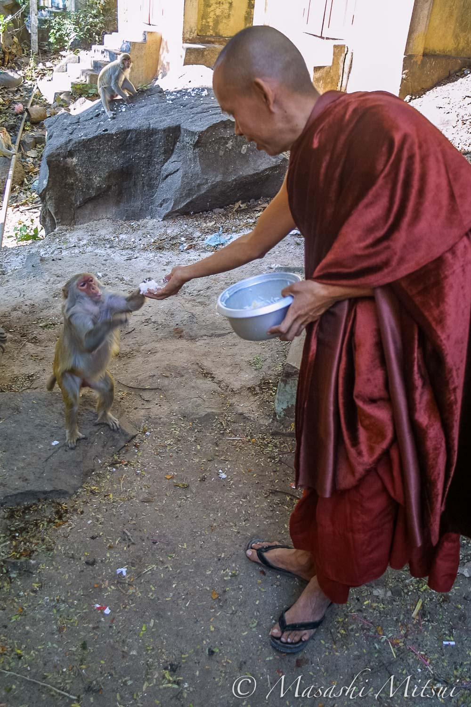 ミャンマーの得度式・仏門に入る通過儀礼 | たびそら 写真家・三井昌志