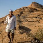 Cattleman (Gujarat)