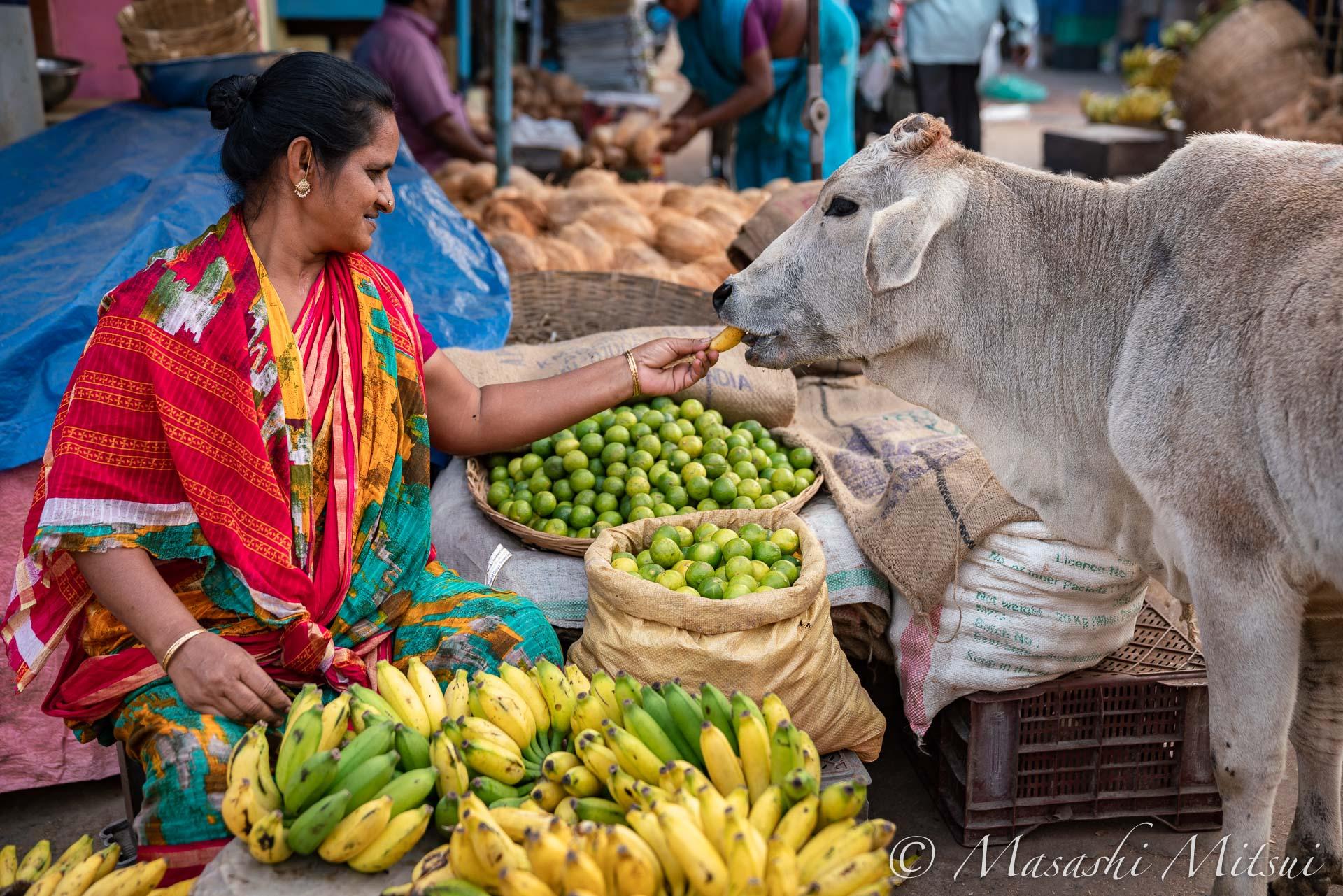 india20-06103
