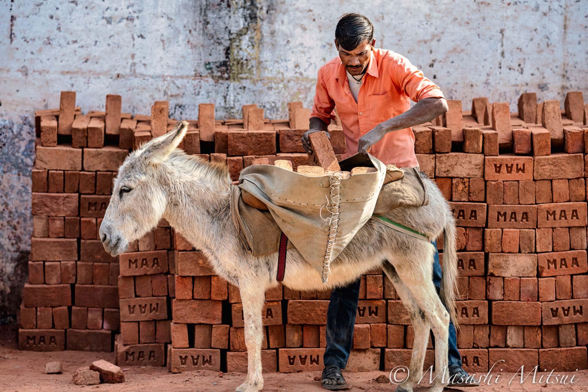 india20-49652